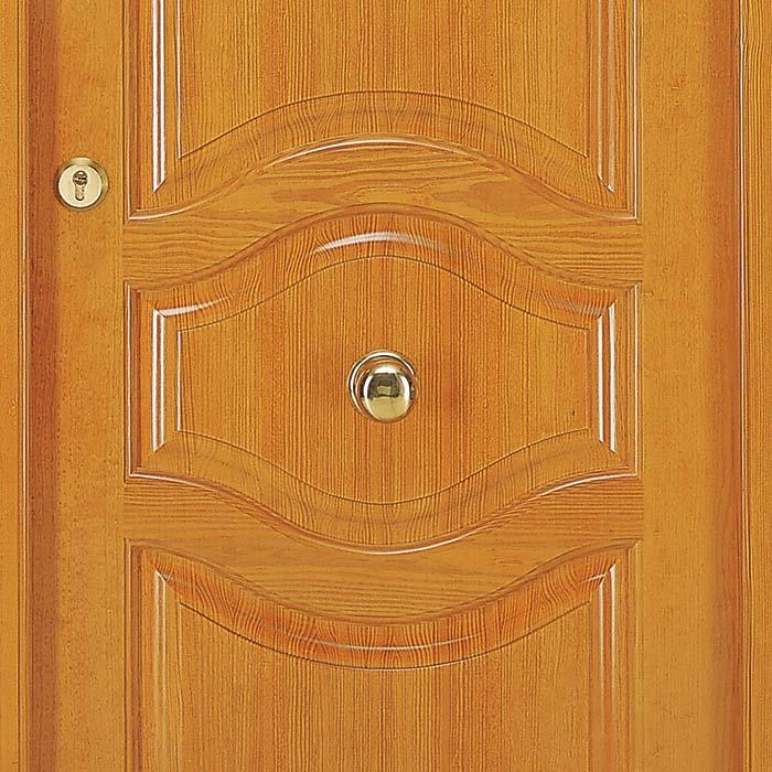 Detalle central de la puerta de exterior Ixeia