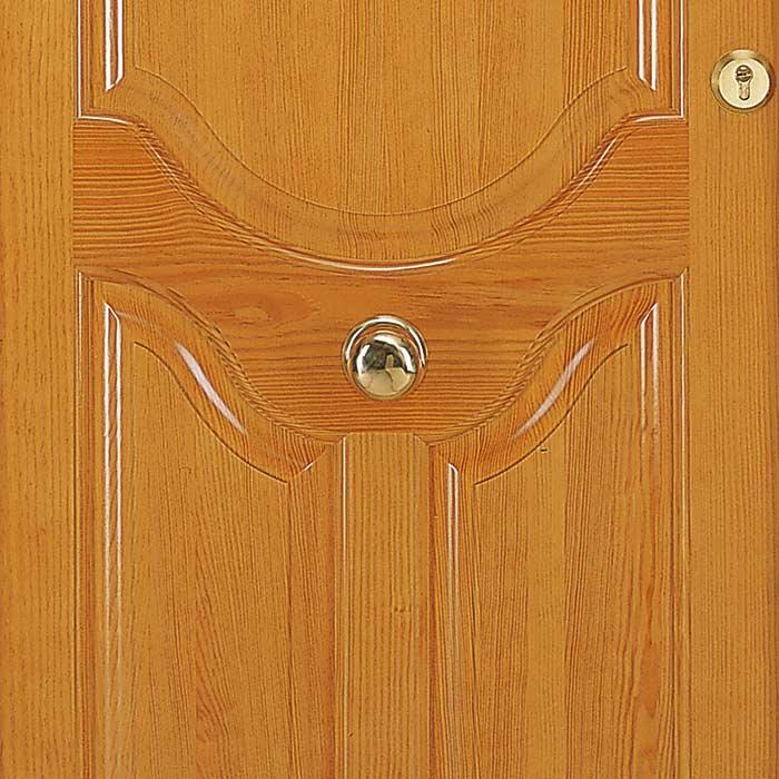 Foto del centro de la puerta exterior de madera Añísclo